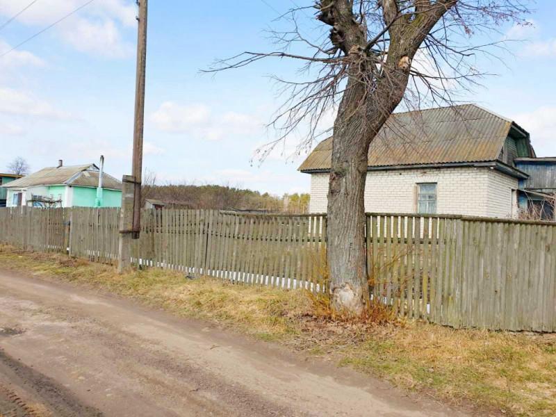 Продам дом в Новом Белоусе в красивом месте!