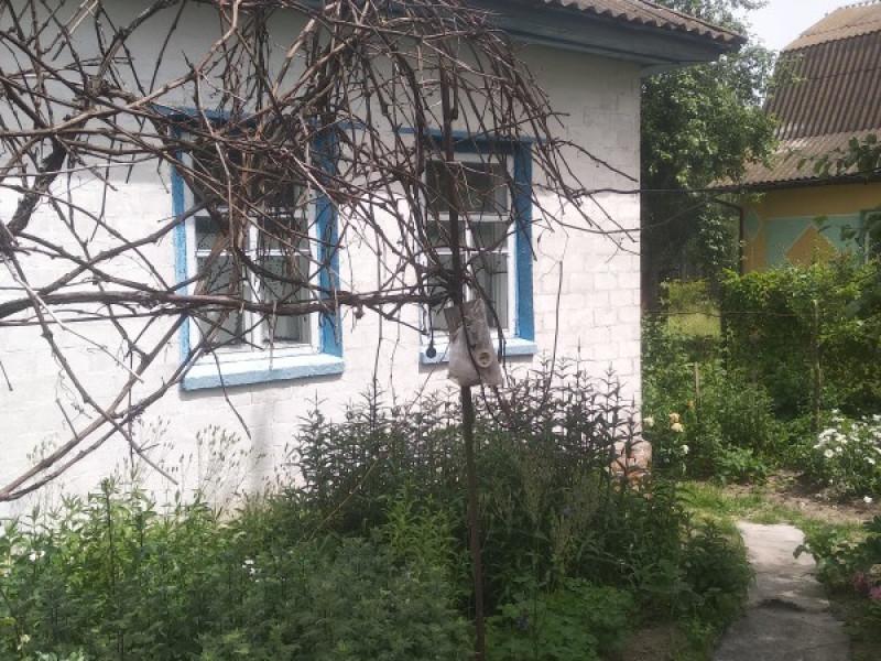Продам дом с. Кошевка и участок 25 соток 3 км от Чернигова
