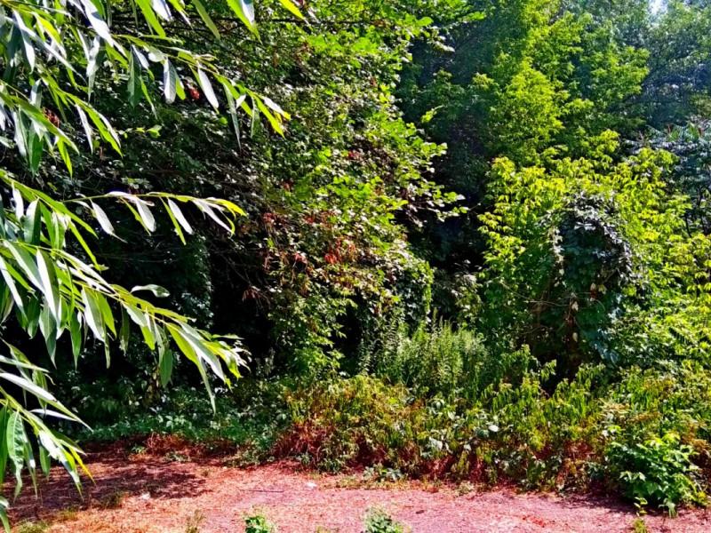 Уникальный земельный участок 17 соток в районе Горсада